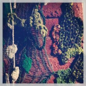 Yarn Plants at #balticbakehouse