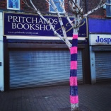 Pritchards Tree